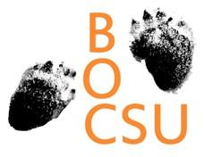 CSU Bushwalking and Outdoors Club Image